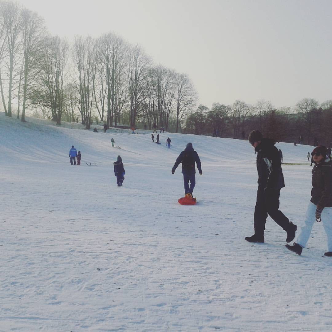 Winter im Luitpoldpark